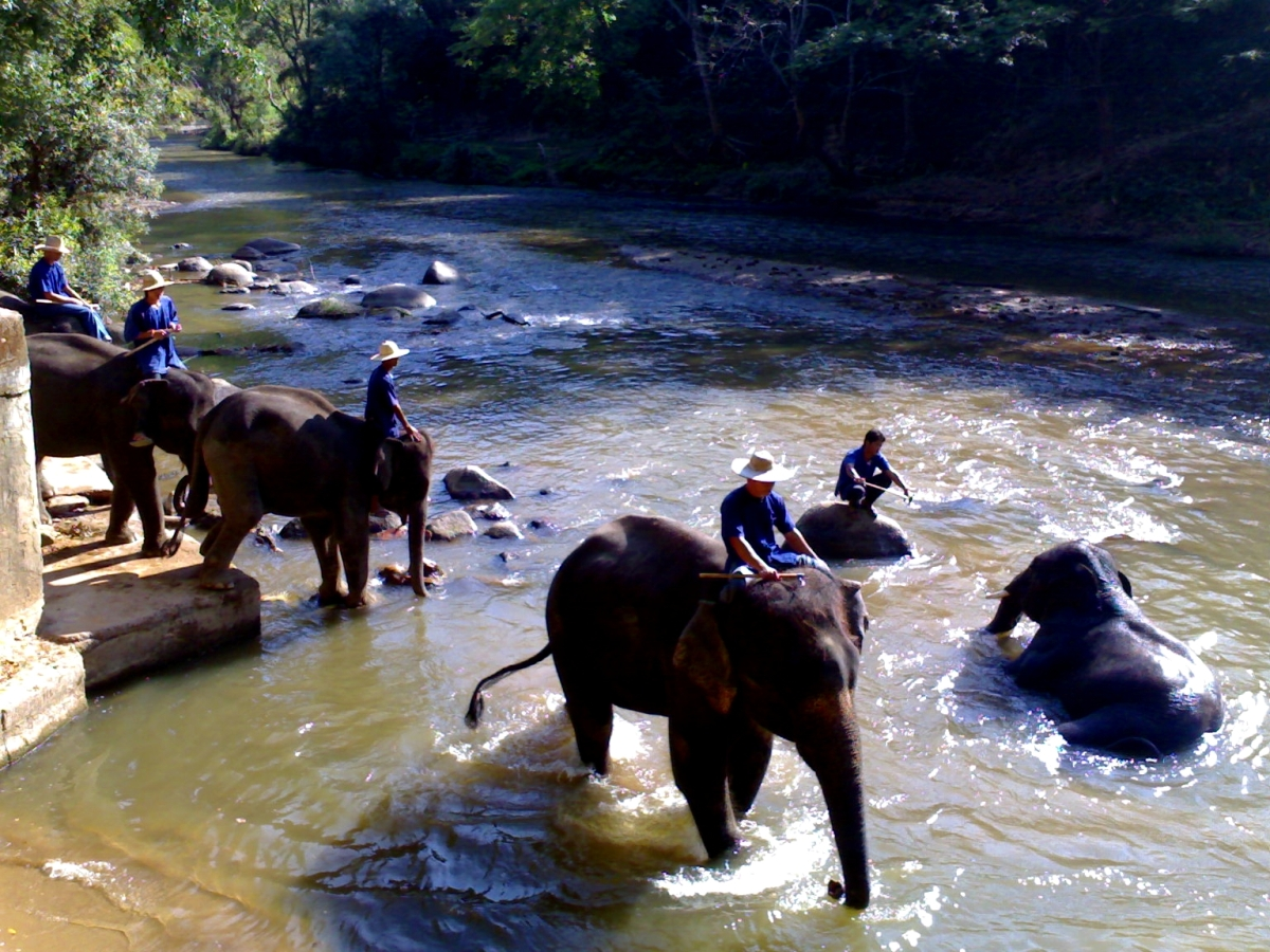 Chiang Mai, Elephants Bathtub