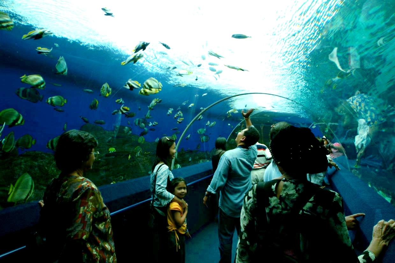 Pattaya, Aquarium